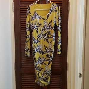A Pea in the Pod Floral Print Maternity Dress